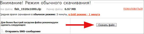 Бесплатно качать файлы с Deposit Files!