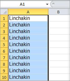 Пример одинакового текста в нескольких ячейках Excel.
